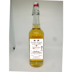 Pollen Angels Bee Mine Mead 750ml