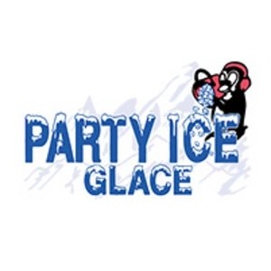 Party Ice Bag Of Ice 9.09kg
