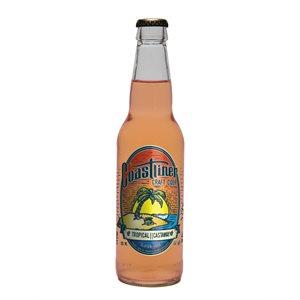 Coastliner Craft Cider Castaway 355ml