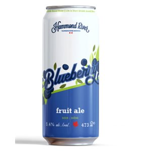 Hammond River Blueberry Ale 473ml