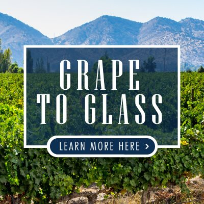Grape-to-Glass-p1-CONTENT-EN