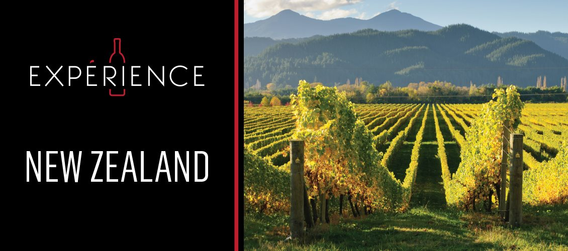 P4-Experience-Headers-NewZealand-EN