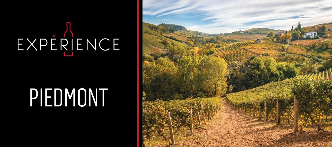 P5-Experience-Headers-Piedmont